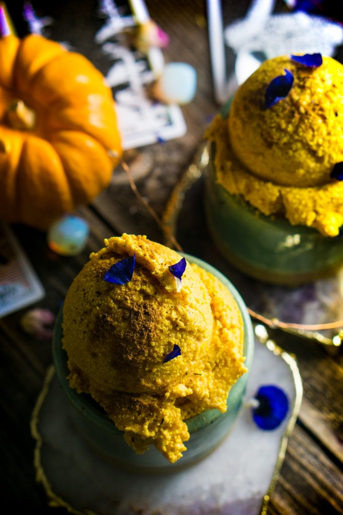 Pumpkin Coconut Kefir Ice Cream
