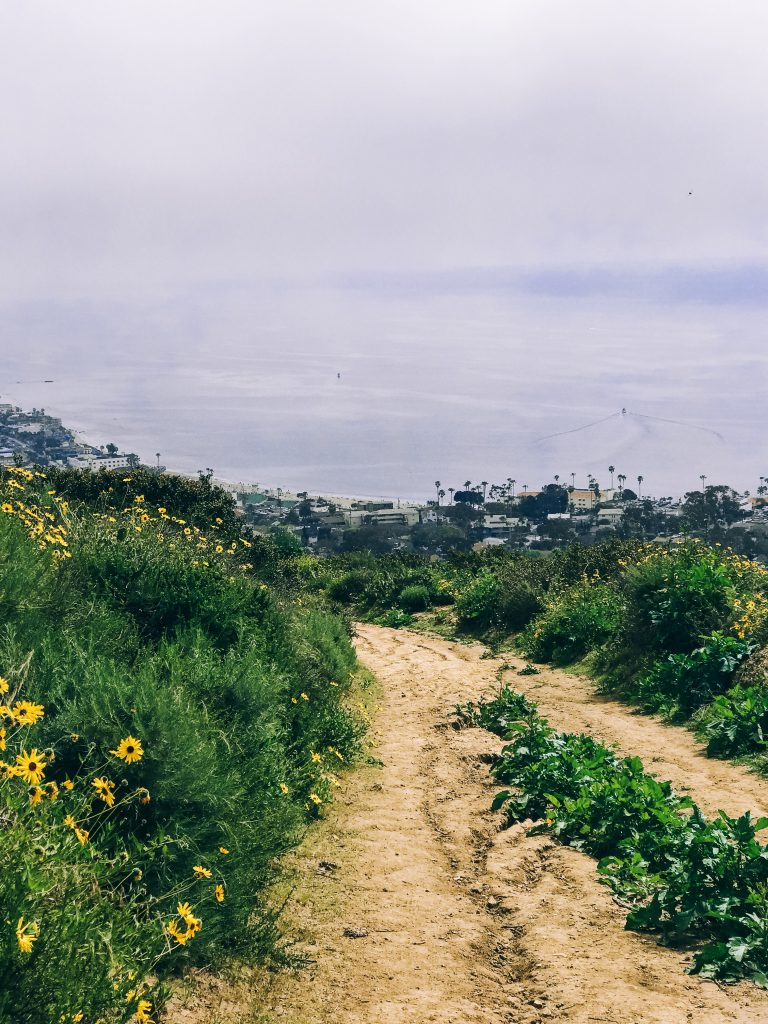 My Guide To Orange County