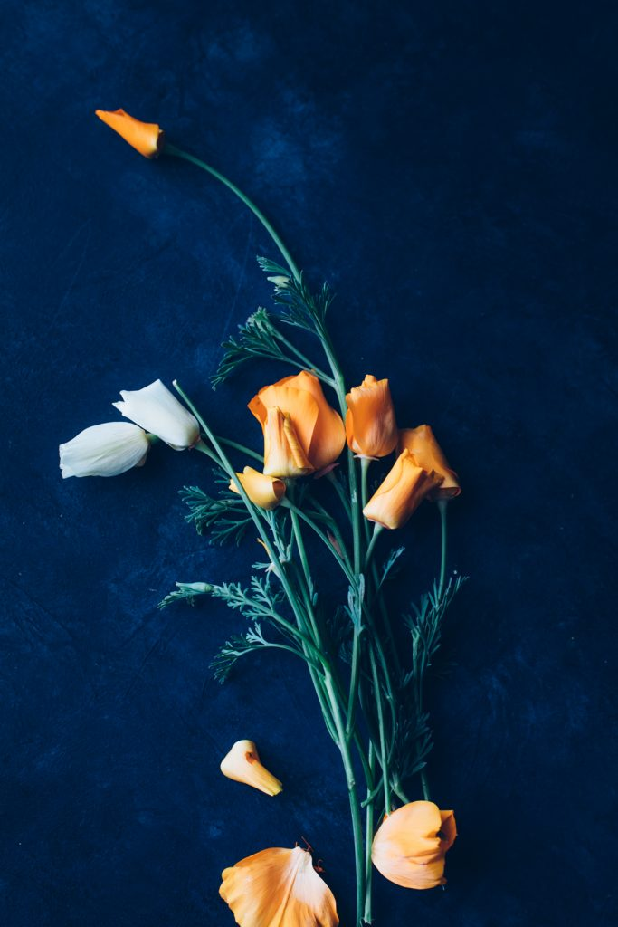 Top down view of the California Poppies used to create the tincture.