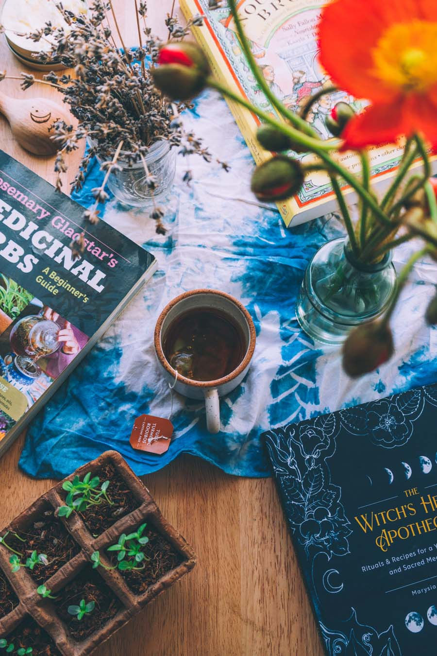 Tea, plant friends and herbalism books make for a great afternoon!